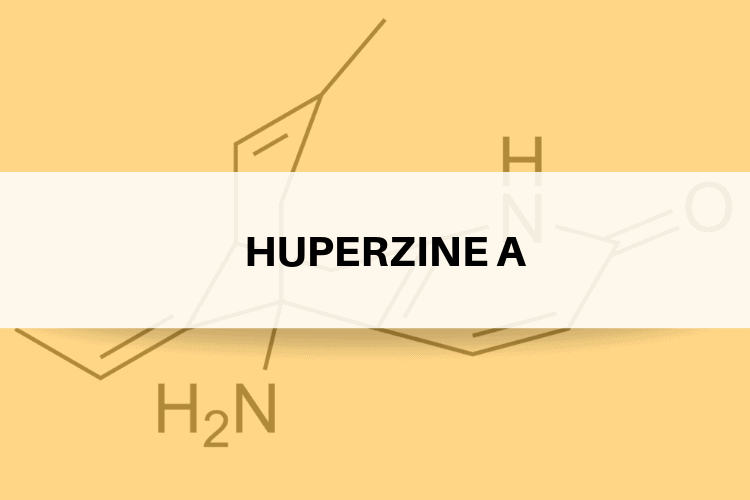 Huperzine A Review - What Are Its Side Effects, Dosage