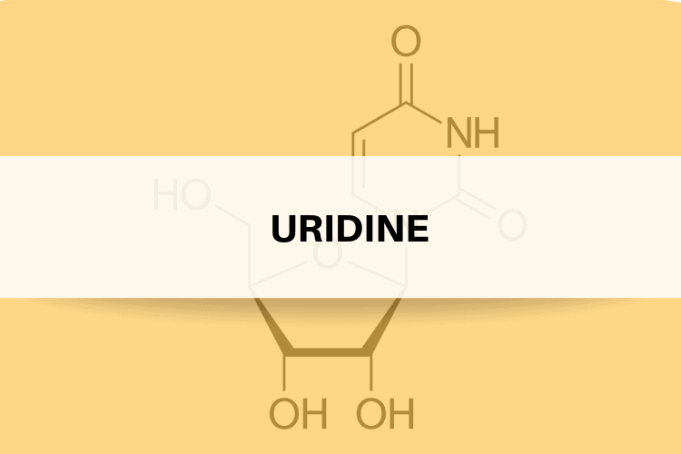 Uridine Review - What Are Its Side Effects, Dosage, Benefits
